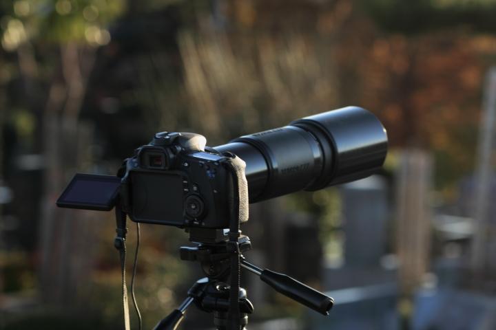 Canon EOS Kiss X2 + Canon EF100mm F2 USM + Kenko C-PL