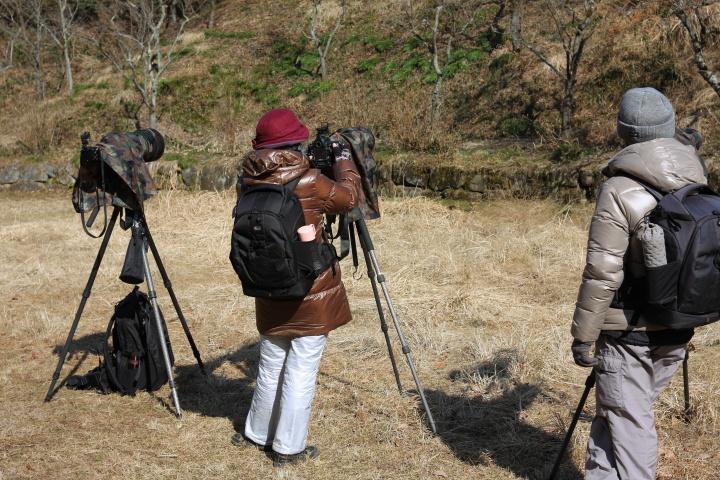 Canon EOS Kiss X2 + Canon EF35mm F2